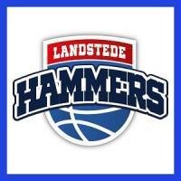 20493 Landstede Hammers logo