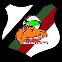 logo ARABE VALPARAISO