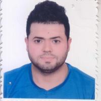 Alaa AL-MAJIDI (3.0)