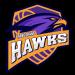 Tangerang Hawks Basketball